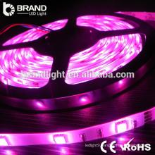 CE RoHS 30leds 3W/M DC12V 4000K 2835 smd led strip light,3 years warranty