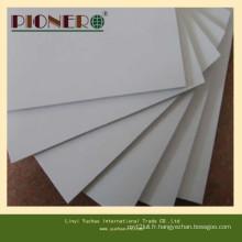 Panneau décoratif de mousse de PVC de mur de vente chaude pour des meubles