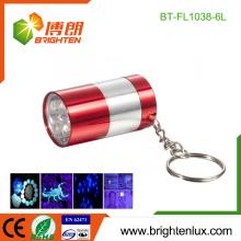 Fabrik Großhandel Aluminium billig Metall Haustier Flecken Erkennung Mini kleine Tasche 6 LED schwarz Licht uv führte Schlüsselbund