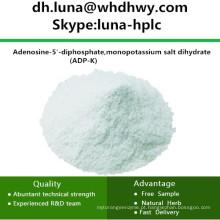 CAS: 72696-48-1 ADP-K / Adenosina 5'-Difosfato Monopotássico Sal