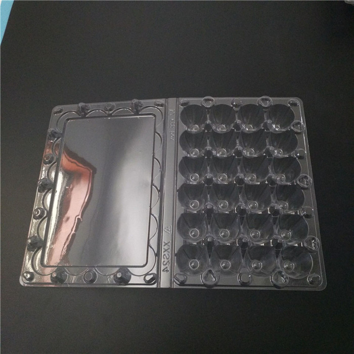 24 Cells Coturnix Eggs Container
