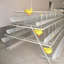 Cage à poulet à 4 niveaux