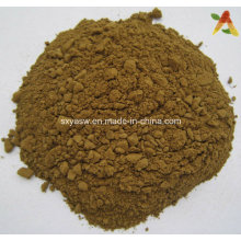 Natural Olive Leaf Extract 10%-40% Hydroxytyrosol
