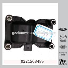 Coil Pack Negro Bobina de encendido Pequeña bobina de encendido Atv para OEM 0221503485