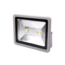 Lumière d'inondation de la meilleure qualité 100W LED de conducteur de la puce Bridgelux Bridgelux