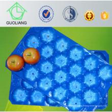 Plaque jetable de 5lb, 10lb, 15lb jetable à bon marché pour l'usage populaire de tomate fraîche au Canada, Mexique, Maroc