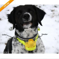 Waterproof Dog Beeper collar Training Hunting With 8 Modes 4 Types of Sound
