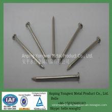 YW- galvanisierte oder polierte gemeinsame Eisennägel (Fabrik)