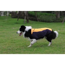 Contrast Colors Pet Clothes for Dog