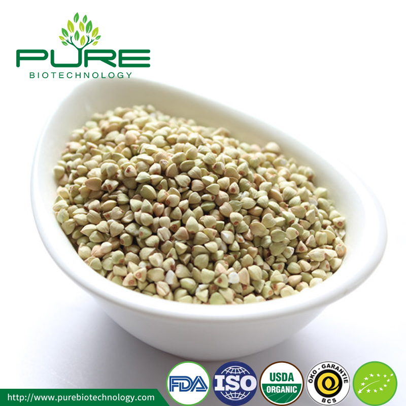 Wholesale Natural Organic Buckwheat