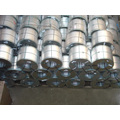 Dx51d Z100 Prime Hot DIP Prepaint Electro Galvanized Steel Coil