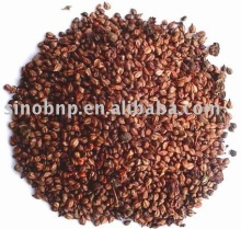 Supply Organic Grape Seed Extract Powder