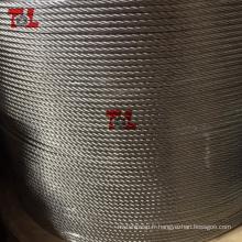 Câble métallique en acier inoxydable 4 mm