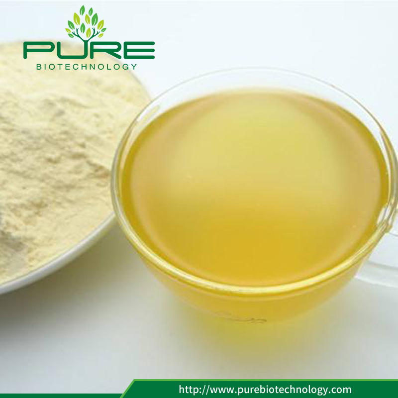 Water Soluble Ginseng Powder with Low Price