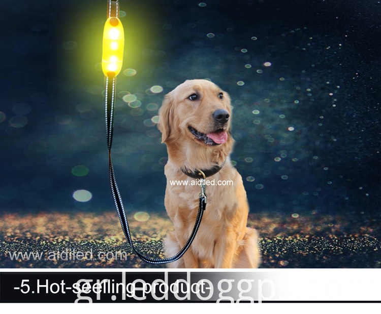 Led Lighted-Up Dog Leash