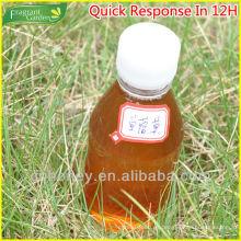 Miel de trébol natural orgánica