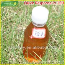 Mel de trevo natural orgânico