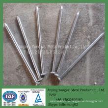YW - Glatte verzinkte gemeinsame Eisen Draht Nägel Fabrik