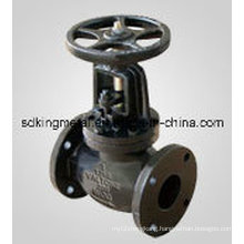 Cast Iron Double Parallel Flashboards Gate Valve