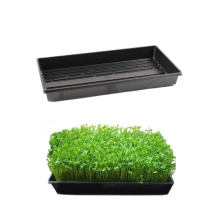 Special Design for Greenhouse Seedling Nursery Bed Hydroponic Trays Climatic Seed Germination export to Romania Wholesale