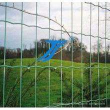 Clôture soudée de grillage de double fil dans 50X200mm