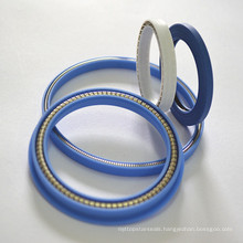 Stainless Steel Spring Energized Seals-PTFE