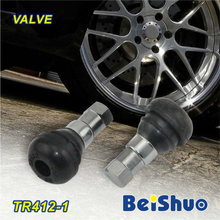 Tr412 Tr413 Tr414 Tire Tyre Valve/Snap-in Tubeless Valves with Rubber Material