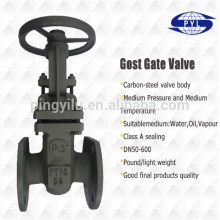 MADE IN CHINA pyl pn16 carbon steel gost gate valve