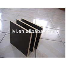 21mm Laminated Plywood/Laminated Marine Plywood to Middle East