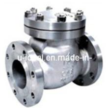 Válvulas de retención de hierro fundido, evite el flujo de retorno de fluido, válvula de retención de bronce