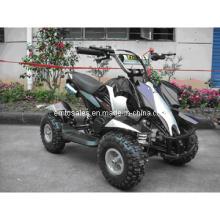 49cc fuera de los niños Mini ATV Quad (et-atvquad-10)