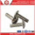 Fastener Screw Stainless Steel Ss304/Ss316 Machine Screw ISO7380/DIN7981/DIN7985/