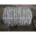 Barbed Wire Bwg12*Bwg14 Hot Sale with Certification