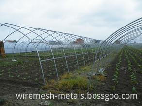galvanized steel pipe for greenhouse (4)