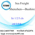 Shenzhen Port LCL Consolidation To Bushire