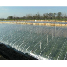 2020 high quality cheap plastic cover multi-span agricultural greenhouse plastic film