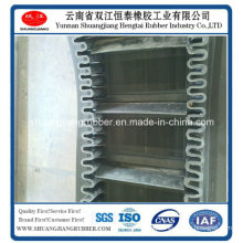 Driving Belt Rubber Conveyor ISO Proof