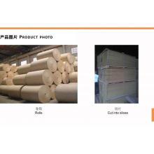 Fabricação de celulose de bagaço de cana de açúcar para utensílios de mesa