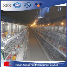 A-Type Cage de poulet Équipement agricole de volaille pour la couche de poulet