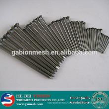 Clavo común hierro fábrica de uñas (fábrica de clavos)