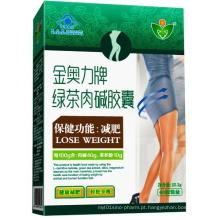 GMP Certified Cla Chá Verde L-Carnitina Softgel para emagrecimento