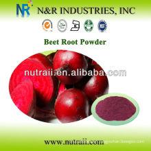 beet root powder 60-200mesh