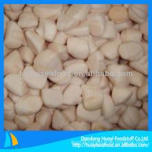IQF frozen bay scallop