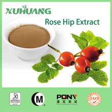 Manufacturer Rosa Rugosa Thunb/Rosehip extract powder/Rose Hips Extract