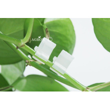 Fruit Vegetable Grafting Clips