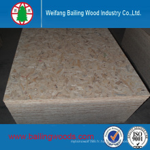 OSB Pin WBP Colle 1220X2440X6mm 9mm 12mm 18mm