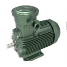 Electric Motor 3 Phase Single Phase IP55 Protection