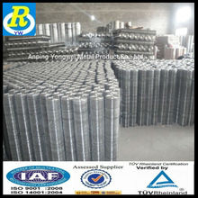 hot-dipped galvanized Square hole welded wire mesh