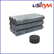 Hard Ferrite Disc Ceramic Magnets (D-008)
