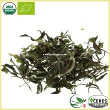 Ligeromente oxidado Cabello blanco Aguja de plata Té blanco Mejores marcas de té blanco
